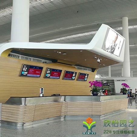 南航国际机场
