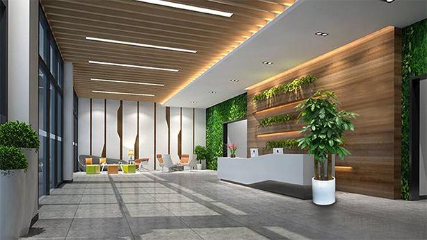 上海办公绿植服务流程